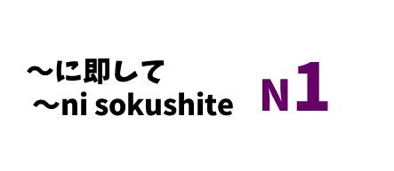 【N1】~にそくして(~に即して)/~ni sokushite