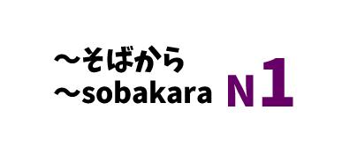 【N1】~そばから /~sobakara